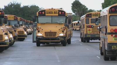Ahora podrás rastrear a tus hijos cuando van en buses escolares hacia y desde su escuela