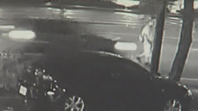 Piden ayuda para encontrar al sospechoso de arrollar mortalmente a un hombre en Broward y darse a la fuga