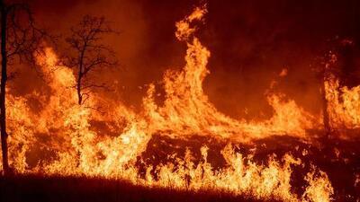 Incendios en el norte de California cobran la vida de dos personas y consumen miles de acres