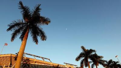 Una noche completamente despejada con temperaturas cálidas vivirá Miami este viernes