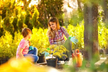 Comienza un jardin o planta flores.
