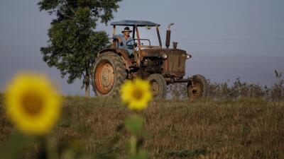 EEUU autoriza primera fábrica en Cuba desde 1959