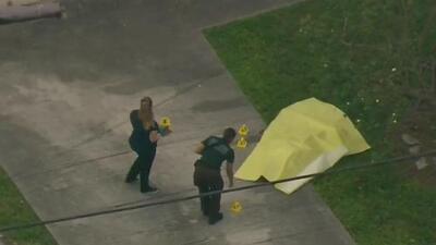 Autoridades investigan el hallazgo de un cadáver en el noroeste de Miami-Dade