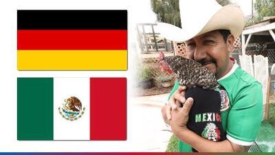 La Gallina Vidente ya tiene al ganador del México vs Alemania
