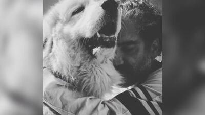 Acusan a Alejandro Fernández de abusar de sus mascotas