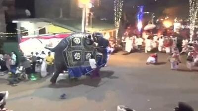 El momento en que un elefante se desboca durante un desfile en Sri Lanka y causa el pánico