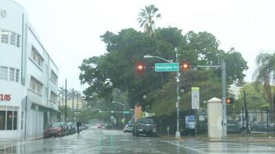 Cielos parcialmente nublados y tormentas en la noche, el pronóstico para este martes en Miami
