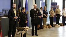 Sully, el perro de servicio de George H.W. Bush, ya tiene un nuevo trabajo
