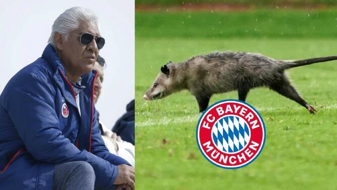 Directivo de Veracruz, 'interesado' con la oferta del Bayern de Múnich por el Tlacuache