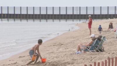 Cierran cuatro playas de la ciudad de Evanston luego de que registraran altos niveles de la bacteria E. coli