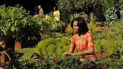 La primera dama Michelle Obama publicará un nuevo libro sobre nutrición