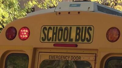 Transporte escolar, uno de los mayores desafíos del Departamento de Educación de Nueva York