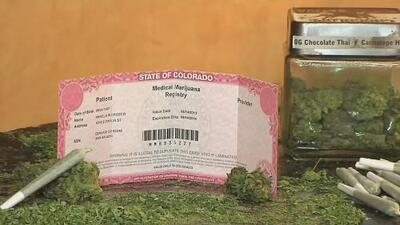 Médicos en Colorado podrán recomendar marihuana medicinal a pacientes cuyos analgésicos son basados en opioides