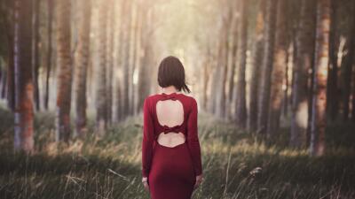 Bosques que ayudan a sanar tu alma