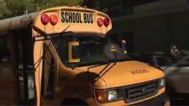 """""""Rutas seguras de Filadelfia"""": presentan programa educativo sobre seguridad vial y transporte"""