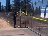 Asesinan a puñaladas a un hombre en un cementerio del condado de Tulare