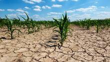 ¿Qué significa que el norte de California está en sequía?