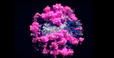 Primer ministro británico dice que variante del coronavirus hallada en el país podría ser más mortal