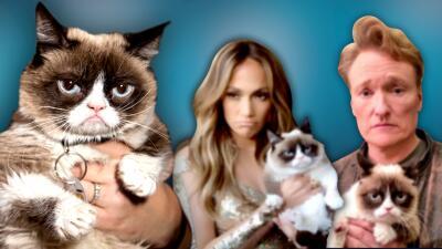 Internet está de luto: muere la célebre mascota Grumpy Cat (estos famosos posaron con ella en vida)