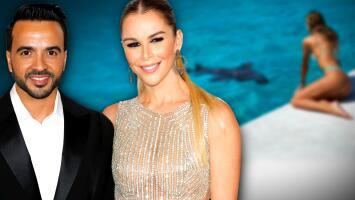 Luis Fonsi termina como 'amigo' del tiburón que quedó encantado con su esposa Agueda López