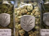 Senador de San Antonio propone legalizar la marihuana para ayudar a la economía de Texas