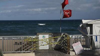 La marea roja llega a las playas de Miami-Dade: Así te afectan las algas tóxicas