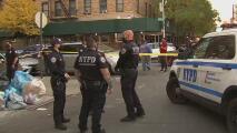 Encuentran a dos bebés muertos envueltos en papel en un patio de El Bronx