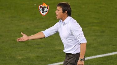 Palmeiras tendría como objetivo fichar a Matías Almeyda