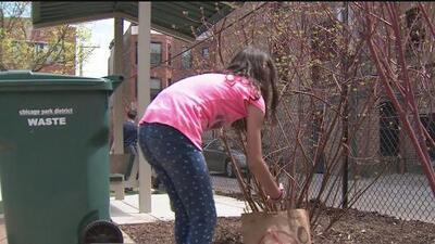 Alumnos de una escuela del norte de Chicago celebran el Día de la Tierra haciendo servicio comunitario