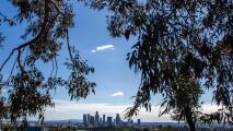 Los Ángeles experimentará una tarde de viernes con condiciones estables, según el pronóstico