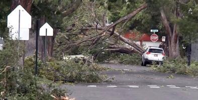 Salt Lake City inicia labores de limpieza y restauración después de la tormenta de viento