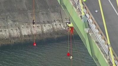 Suspendidos desde un puente: así protestan miembros de Greenpeace en el Canal de Navegación de Houston