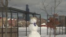 ¿Un muñeco que se parece a Trump? La nieve en Chicago ha incentivado la creatividad de muchos