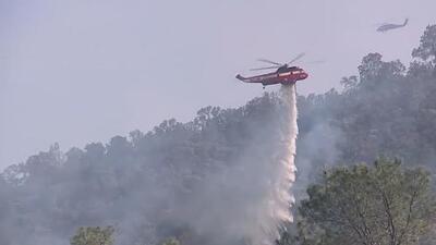 """""""No tirar las colillas de cigarro al piso"""": consejos de los bomberos para prevenir un incendio"""