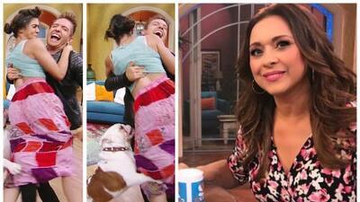 Mela niega que el perro la mordió y el día que Neida Sandoval enfrentó a su hijo