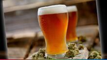 Cerveza a base de cannabis: Esto es lo que dicen los creadores de esta bebida artesanal