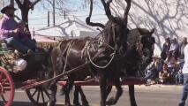 Cientos de familias disfrutan la Fiesta de los Vaqueros, una de las grandes tradiciones en Tucson