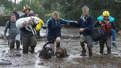 Deslaves por tormenta invernal en California: Al menos 13 personas muertas, 25 lesionadas y 50 rescatadas
