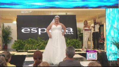 Feria de novias y novios en Plaza