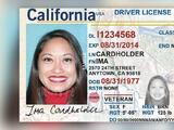 Si planeas viajar dentro del país o visitar un edificio federal a fin de año, podrías necesitar un Real ID