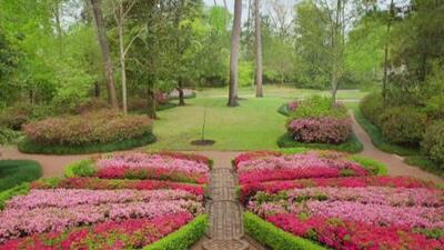 'Beyou Bend Gardens', un lugar lleno de magia, tranquilidad y naturaleza disponible para la comunidad en Houston