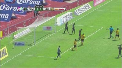 Highlights: Leones Negros vs. Pumas UNAM -ONLY FOR VOD