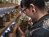 Drogas duras, marihuana, hongos alucinógenos: así avanzó la despenalización de drogas en las elecciones