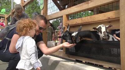 El zoológico de Brookfield ofrece días de admisión gratis para niños el mes de agosto