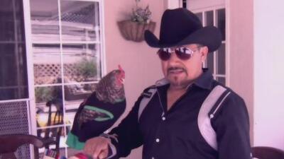 La 'gallina vidente' ya tiene ganador para los cuartos de final: ¿México u Honduras?