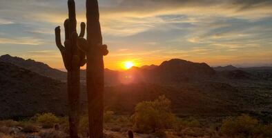 Arizona: cielos soleados y temperaturas en aumento, los 70ºF pronto regresarán
