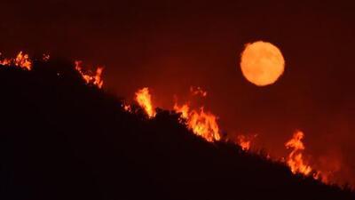 Ola de calor y 17 incendios forestales hacen de California un horno