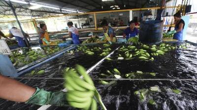 ¿Qué se volvería más caro en EEUU si Trump impone aranceles a las importaciones de productos de México?