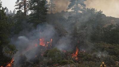 Muere un bombero que combatía el incendio Ferguson cerca del Parque Nacional Yosemite en California