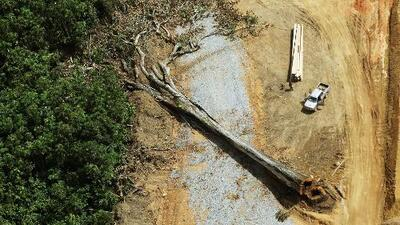¿Cómo se pueden aprovechar los beneficios de la naturaleza sin causarle daño y provocar su exterminio?